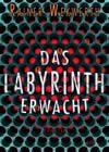 Das Labyrinth erwacht (Thumbnail)