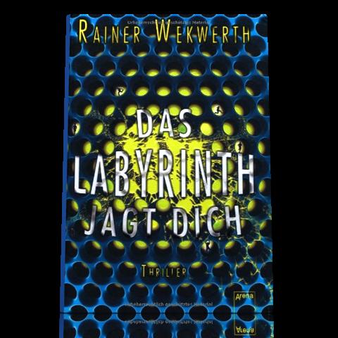 """Rainer Wekwerth: Das Labyrinth jagt dich (Teil 2 der """"Labyrinth""""-Trilogie)"""